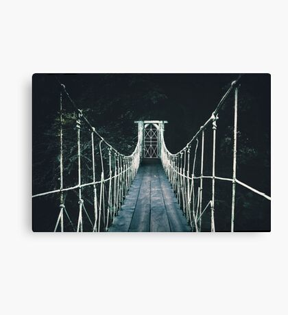 Into Mystery Canvas Print