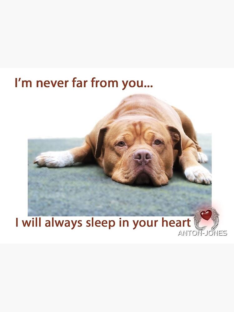 Pet Loss Dog Loss Greeting Card Bulldog Sympathy Card
