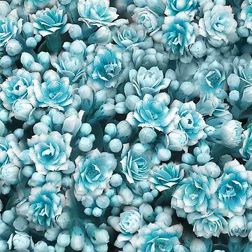 Blue succulents by CatyArte