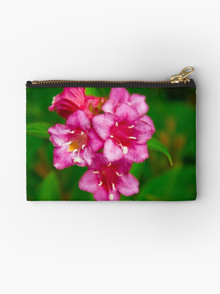 Pink bell flowers studio pouches by sue ratcliffe redbubble pink bell flowers by sue ratcliffe mightylinksfo
