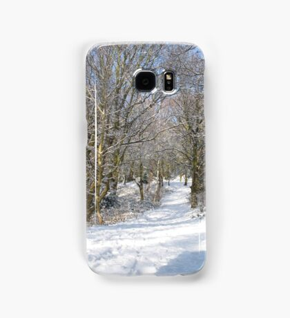 Snow Path Samsung Galaxy Case/Skin