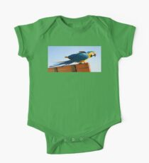 Macaw Extended Kids Clothes