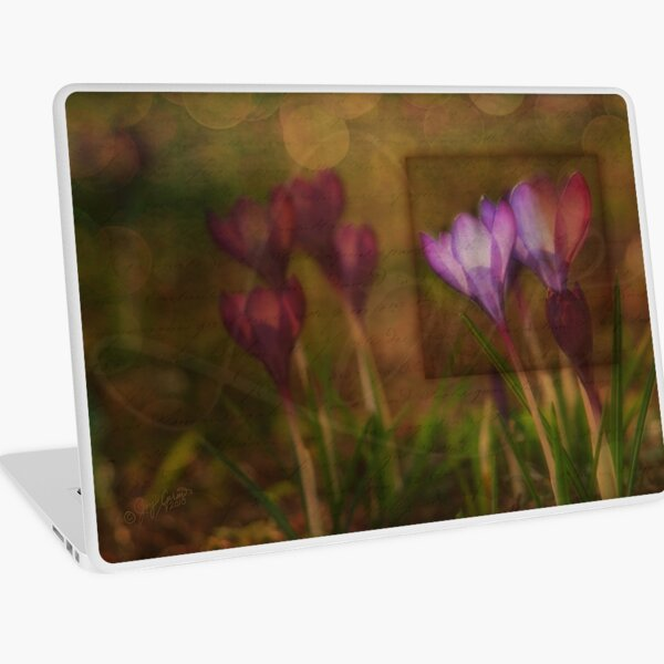 When the Light Paints the Flowers Laptop Skin
