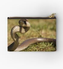 Eastern Brown Snake Studio Pouch