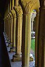 Pillars at Cloister, Iona Abbey, Scotland by Beth A.  Richardson