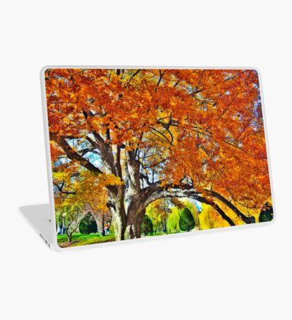 Still in colors Laptop Skin