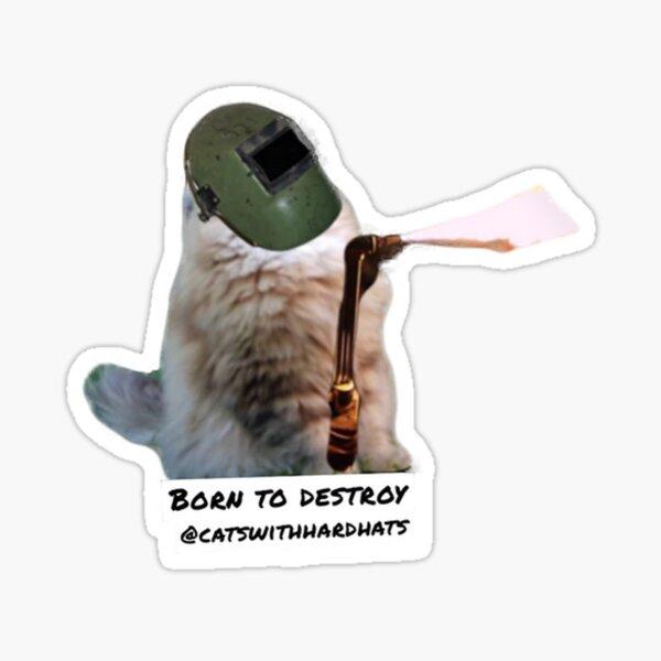 Born to destroy  Sticker