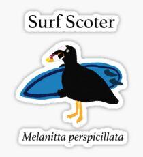 Surf Scoter Sticker