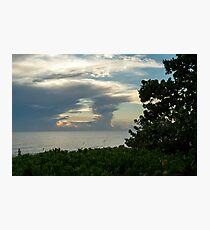 Sea Side Forest Photographic Print