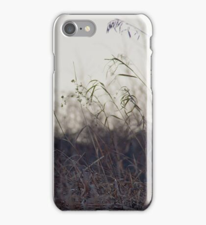winter sunset grass iPhone Case/Skin