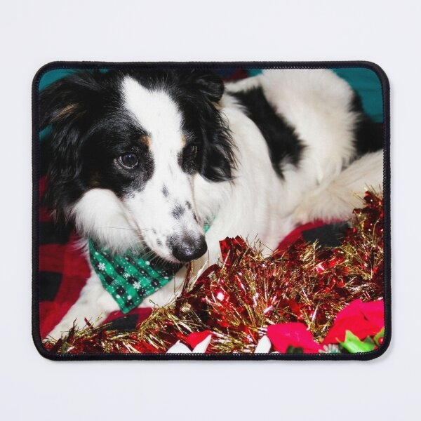 Skipper in the Garland Mouse Pad