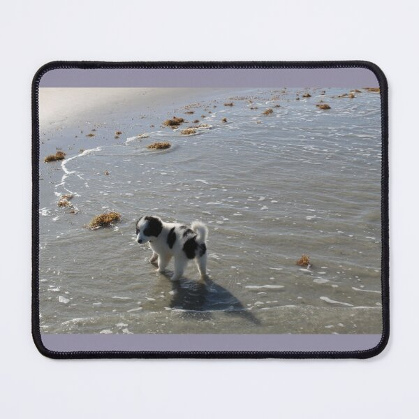 Australian Shepherd Puppy's First Day at the Beach Mouse Pad