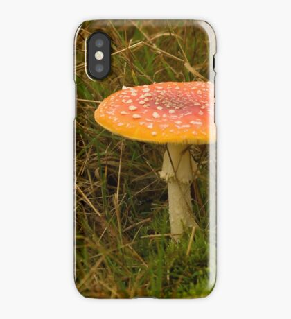 Herald of Fall iPhone Case/Skin