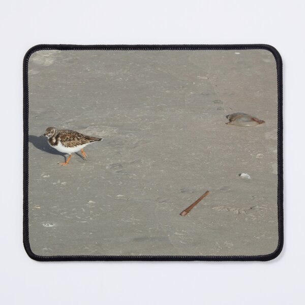 I Quit! This Job is for the Birds! Mouse Pad