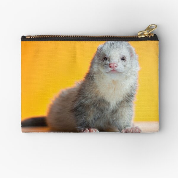 Frodo the Lion. Zipper Pouch