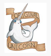 Original Unicorn  Photographic Print