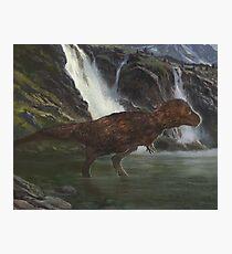 Tyrannosaurus Photographic Print