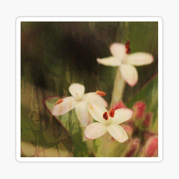Pink Riceflowers Sticker