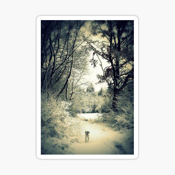Winter Walk Sticker