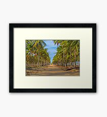 Topical Landscape Scene at Porto Galinhas Brazil Framed Print