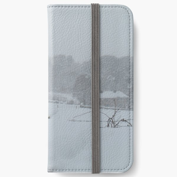 Blizzard iPhone Wallet