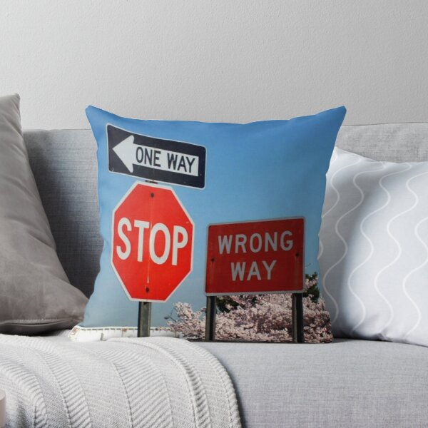 Better Not Drive Into This Road…. Throw Pillow