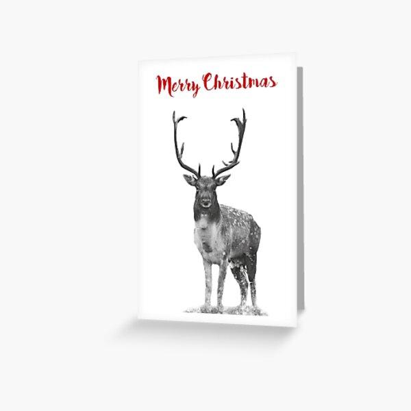 Deer Christmas card  Greeting Card