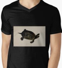 Tortoises terrapins and turtles drawn from life by James de Carle Sowerby and Edward Lear 043 T-Shirt