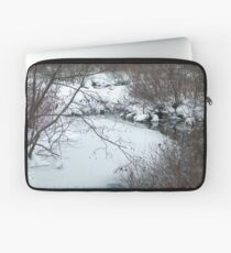 Winter Freeze Laptop Sleeve