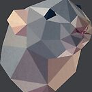 geometric rat by onelasttrick