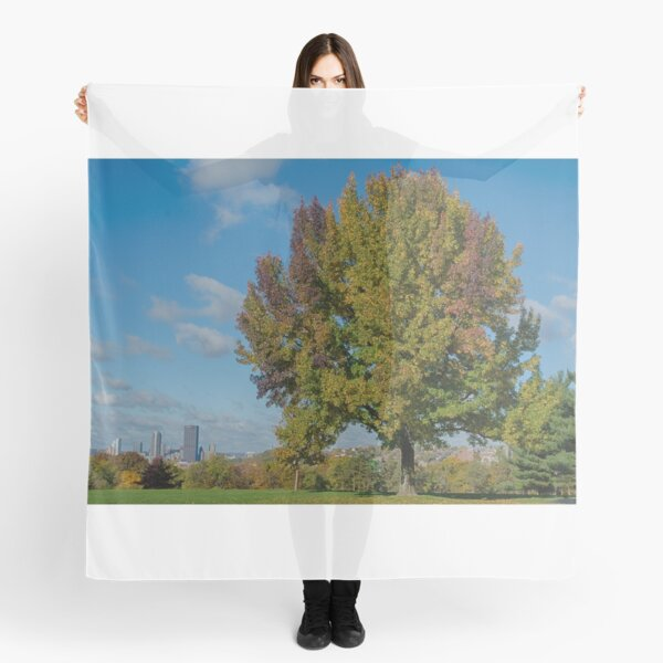 Tree in Schenley Oval Scarf