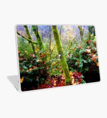 colors of the forest Laptop Skin