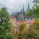 Prague Castle from the Lower Garden by Imagery