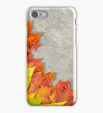 autumn leaves as a frame iPhone Case/Skin