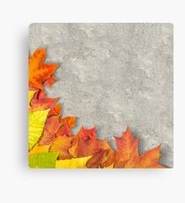 autumn leaves as a frame Canvas Print