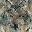Watercolor Wolf by TinaGraphics