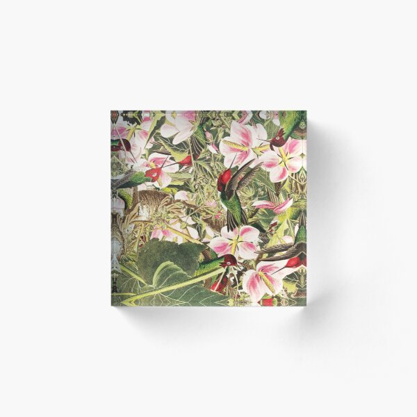 Beautiful Pattern With Birds Flowers, And Leaves Acrylic Block