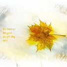 Card - norwegian txt by julie08