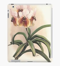Reichenbachia Orchids illustrated and described by F. Sander 1888 V1-V2 062 iPad Case/Skin