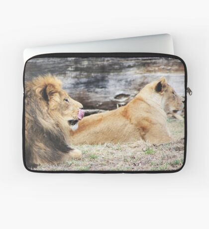 African Lion and Lioness Laptop Sleeve
