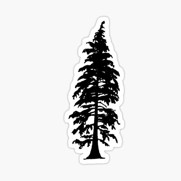 Evergreen Tree Sticker