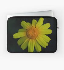 Chrysanthemum coronarium Laptop Sleeve