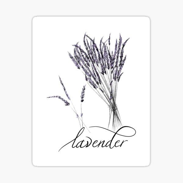 Lavender Bunch Sticker