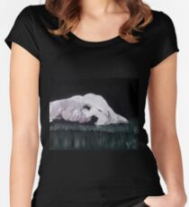 Charlie the Dog Sleeping Women's Fitted Scoop T-Shirt