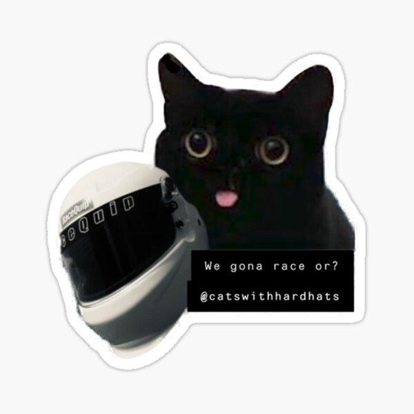 Chat de course Sticker