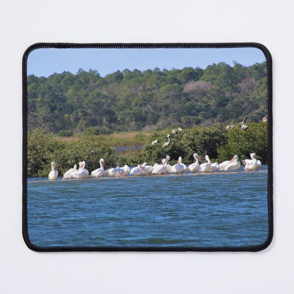 Flock of White Pelicans on a Sandbar Mouse Pad