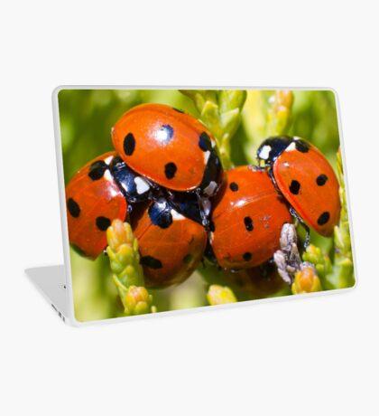 Ladybirds  Laptop Skin