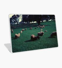Sheep on One Tree Hill Laptop Skin