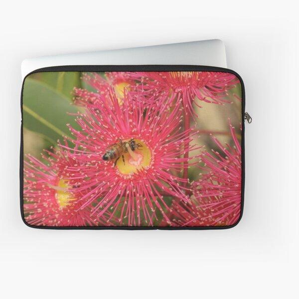 Red-flowering Gum Flower with Bee Laptop Sleeve