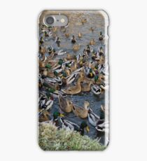 Duck Frenzy iPhone Case/Skin